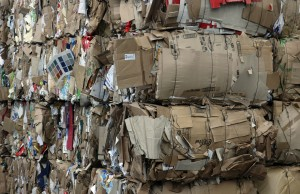 Baled cardboard stacked ready for recycling